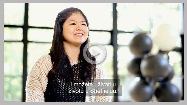 Professional subtitling service
