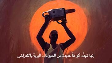 Arabic-Subtitling-UN_sm