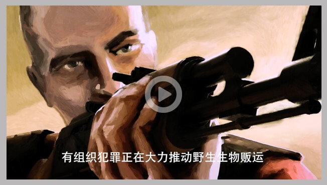 Chinese voice-over and subtitling