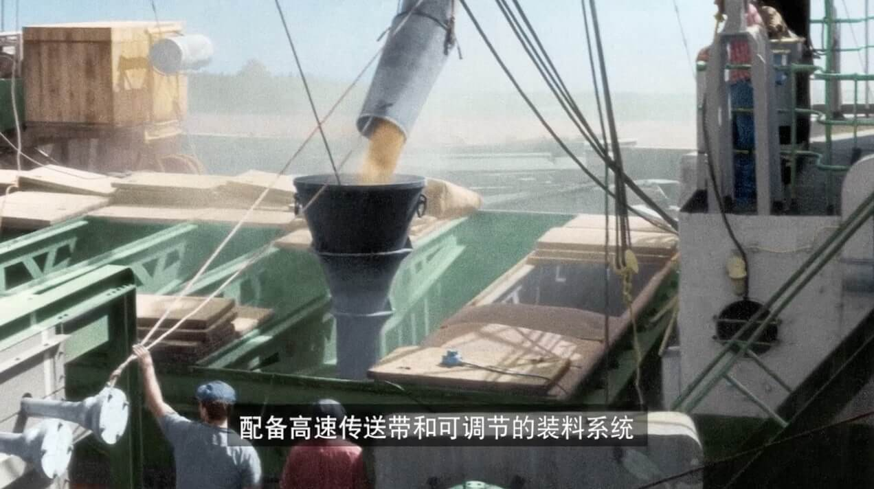 Chinese subtitling for Bunge